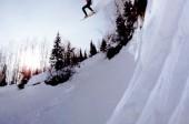 Inventing Snowboarding UTAH 1970′s