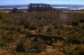 LAST PARADISE Story - Australian Outback 2
