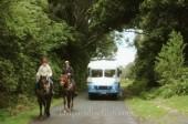 LAST PARADISE Story - Kiwi Kids on the Farm 4